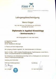 AK Applied Kinesiology Physio Dziggel