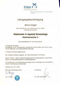 Applied Kinesiology Physio Dziggel